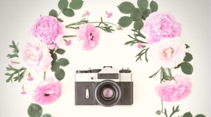 ピンクの花とカメラ